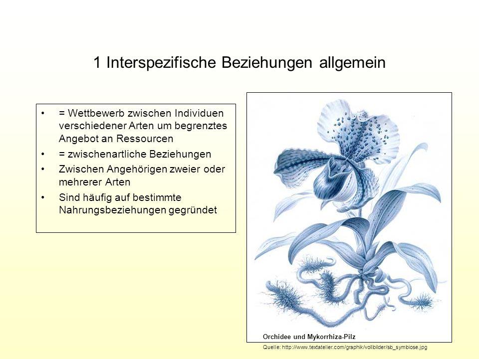 1 Interspezifische Beziehungen allgemein = Wettbewerb zwischen Individuen verschiedener Arten um begrenztes Angebot an Ressourcen = zwischenartliche B