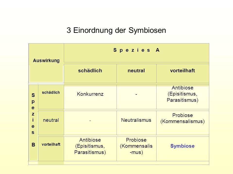 3 Einordnung der Symbiosen Auswirkung S p e z i e s A schädlichneutralvorteilhaft SpeziesBSpeziesB schädlich Konkurrenz - Antibiose (Episitismus, Para