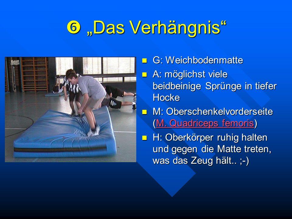 Das Verhängnis Das Verhängnis G: Weichbodenmatte A: möglichst viele beidbeinige Sprünge in tiefer Hocke M: Oberschenkelvorderseite (M. Quadriceps femo