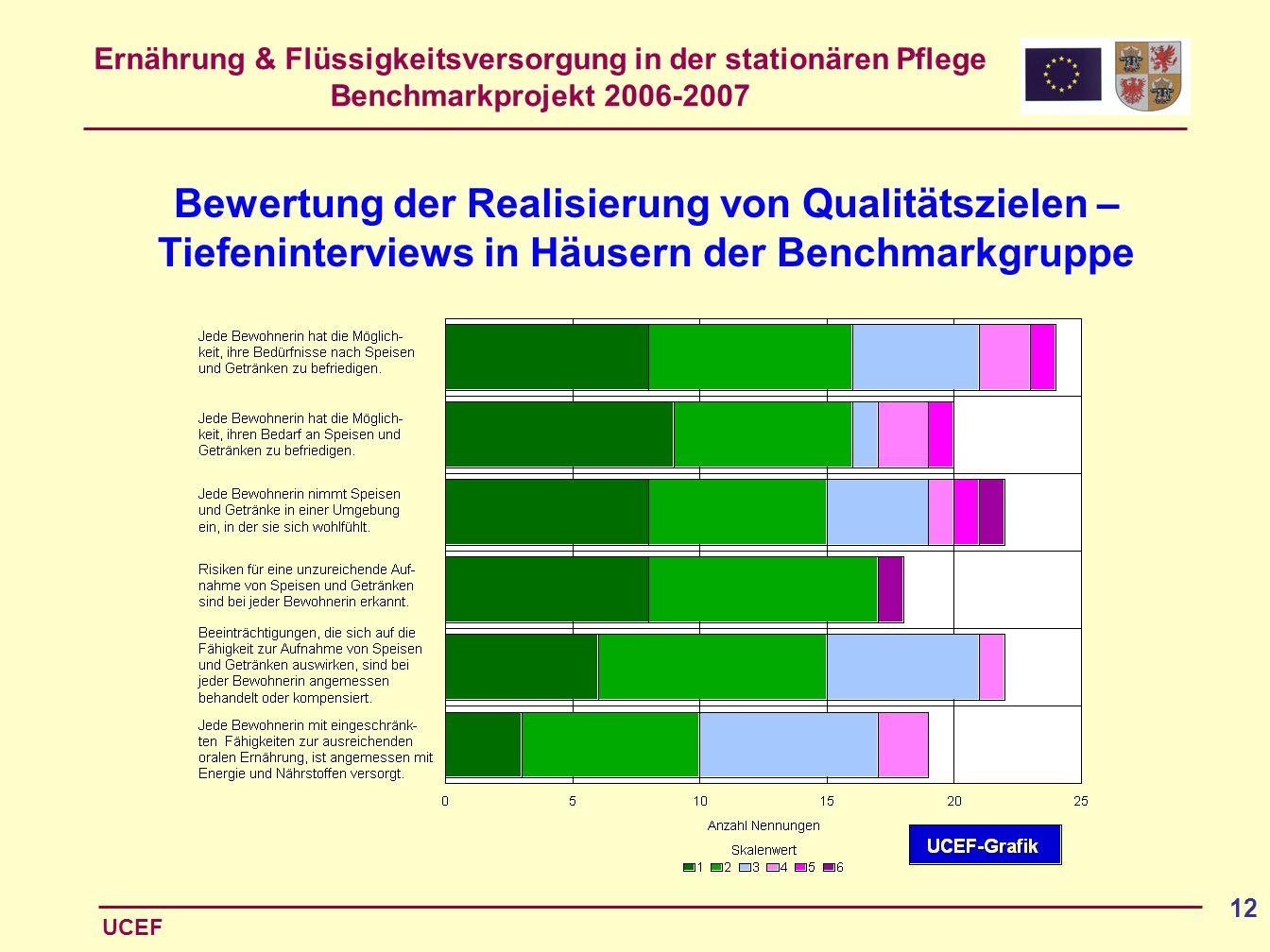 Ernährung & Flüssigkeitsversorgung in der stationären Pflege Benchmarkprojekt 2006-2007 UCEF 12 Bewertung der Realisierung von Qualitätszielen – Tiefe