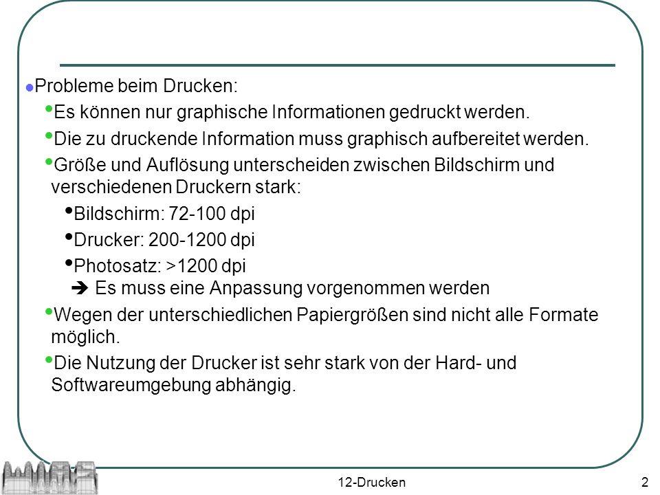 12-Drucken2 Probleme beim Drucken: Es können nur graphische Informationen gedruckt werden.