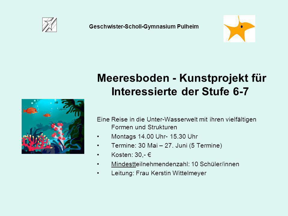 Meeresboden - Kunstprojekt für Interessierte der Stufe 6-7 Eine Reise in die Unter-Wasserwelt mit ihren vielfältigen Formen und Strukturen Montags 14.