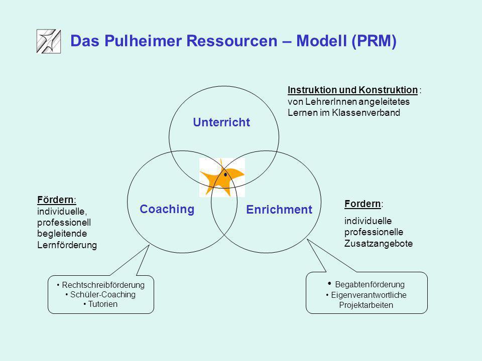 Coaching Enrichment Unterricht Fördern: individuelle, professionell begleitende Lernförderung Fordern: individuelle professionelle Zusatzangebote Inst