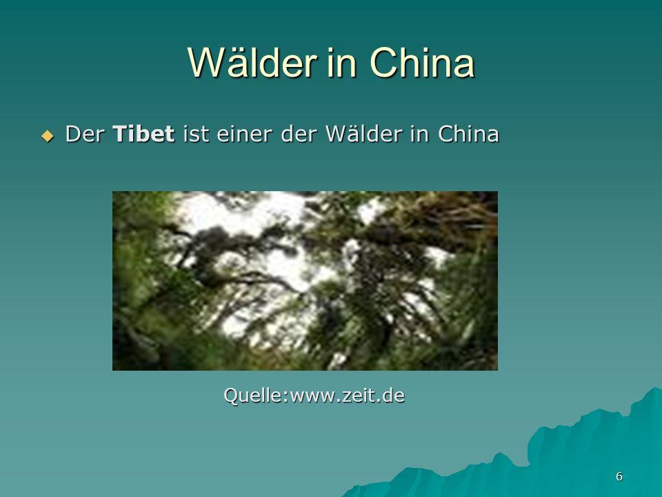 6 Wälder in China Der Tibet ist einer der Wälder in China Der Tibet ist einer der Wälder in China Quelle:www.zeit.de Quelle:www.zeit.de