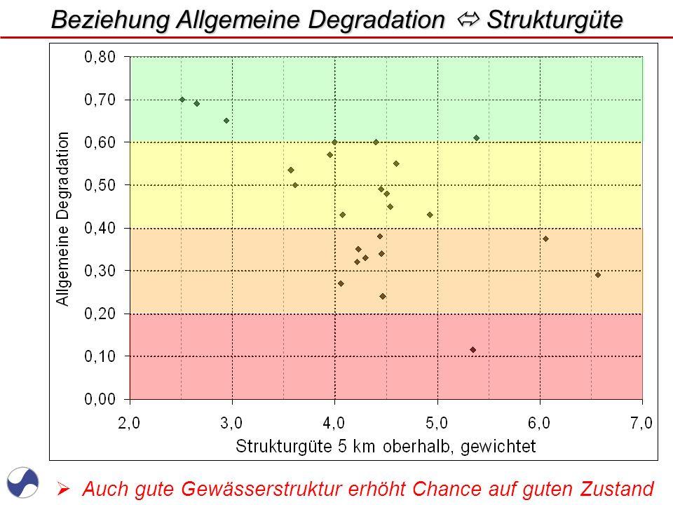 www.WUPPERVERBAND.de Beispiel für gute Morphologie mit Ausuferungsmöglichkeit : Unterlauf Klausener Bach / RS Morphologisch auch nicht schlecht, aber noch Entwicklungspotential ?