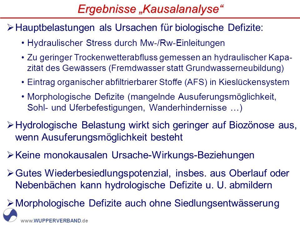 www.WUPPERVERBAND.de Hauptbelastungen als Ursachen für biologische Defizite: Hydraulischer Stress durch Mw-/Rw-Einleitungen Zu geringer Trockenwettera