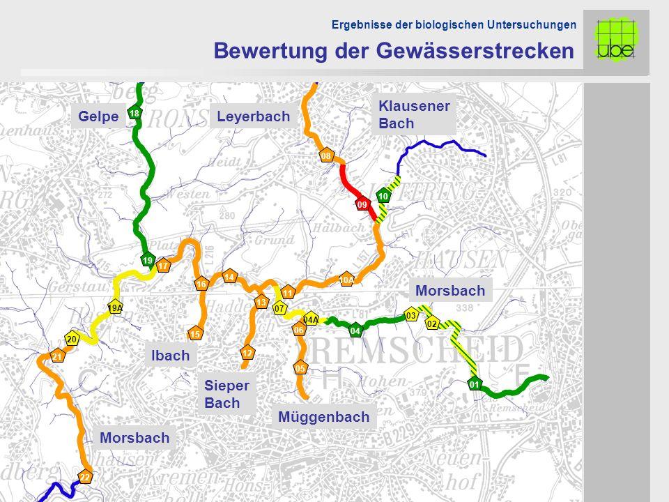 Morsbach Müggenbach Sieper Bach Ibach LeyerbachGelpe Morsbach Ergebnisse der biologischen Untersuchungen Bewertung der Gewässerstrecken 05 06 04A 09 2