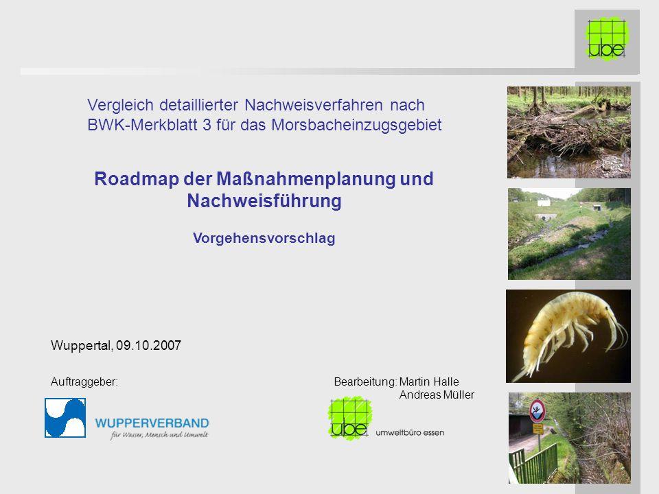 Roadmap der Maßnahmenplanung und Nachweisführung Vorgehensvorschlag Vergleich detaillierter Nachweisverfahren nach BWK-Merkblatt 3 für das Morsbachein