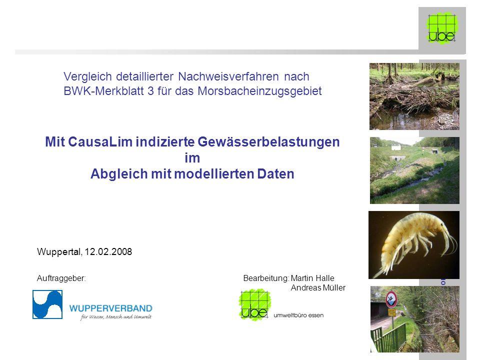 FE-Morsbach ube-Präsentation 12.02.2008 Mit CausaLim indizierte Gewässerbelastungen im Abgleich mit modellierten Daten Vergleich detaillierter Nachwei