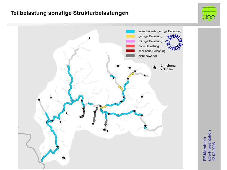 FE-Morsbach ube-Präsentation 12.02.2008 Teilbelastung sonstige Strukturbelastungen Einleitung > 300 l/s