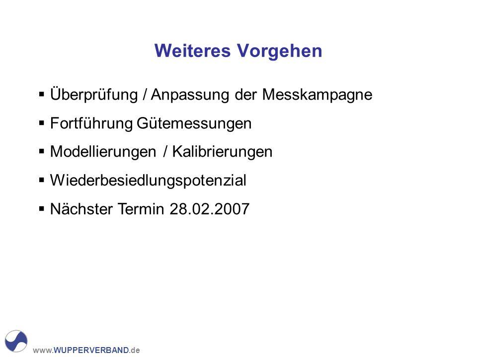 www.WUPPERVERBAND.de Weiteres Vorgehen Überprüfung / Anpassung der Messkampagne Fortführung Gütemessungen Modellierungen / Kalibrierungen Wiederbesiedlungspotenzial Nächster Termin 28.02.2007