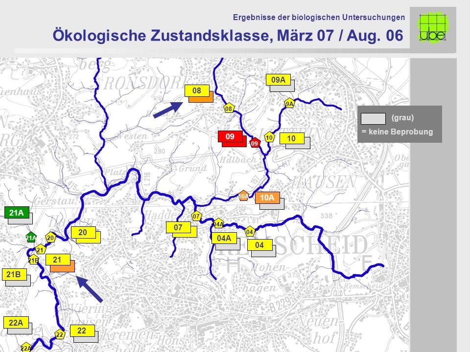 21 20 09 10 10A 07 Ökologische Zustandsklasse, März 07 / Aug. 06 Ergebnisse der biologischen Untersuchungen 21A 21 20 07 10A 09 10 = keine Beprobung (