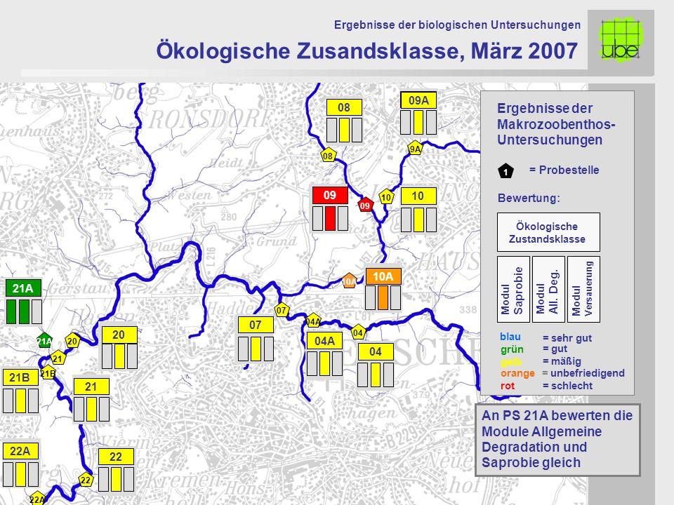 21 20 09 10 10A 07 Ökologische Zusandsklasse, März 2007 Ergebnisse der biologischen Untersuchungen 21A An PS 21A bewerten die Module Allgemeine Degrad