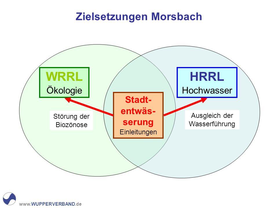 www.WUPPERVERBAND.de Zielsetzungen Morsbach WRRL Ökologie HRRL Hochwasser Stadt- entwäs- serung Einleitungen Störung der Biozönose Ausgleich der Wasserführung