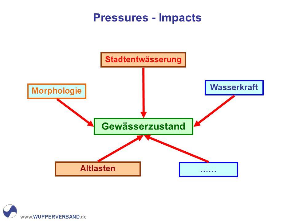 www.WUPPERVERBAND.de Pressures - Impacts Gewässerzustand Wasserkraft Stadtentwässerung Altlasten Morphologie ……