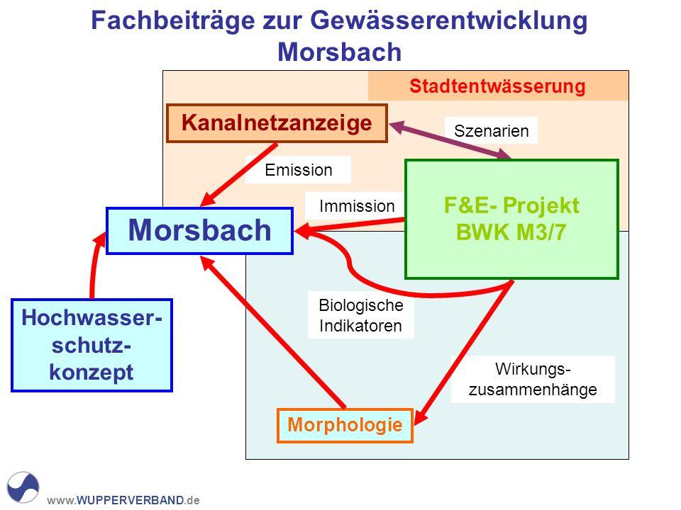 www.WUPPERVERBAND.de Fachbeiträge zur Gewässerentwicklung Morsbach Hochwasser- schutz- konzept Stadtentwässerung Emission Wirkungs- zusammenhänge Kanalnetzanzeige Morphologie Morsbach Immission Biologische Indikatoren Szenarien F&E- Projekt BWK M3/7