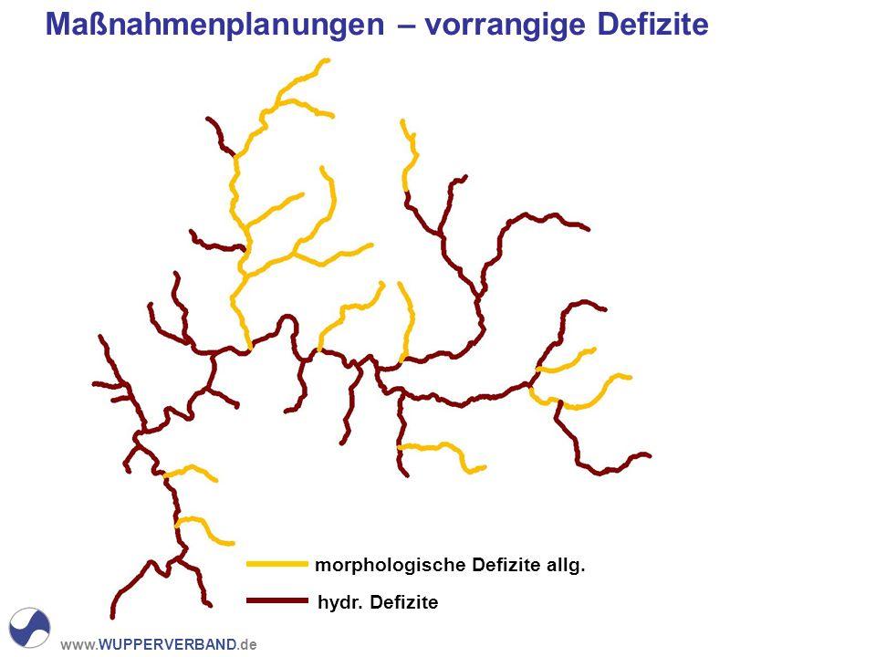 www.WUPPERVERBAND.de Maßnahmenplanungen – vorrangige Defizite morphologische Defizite allg.