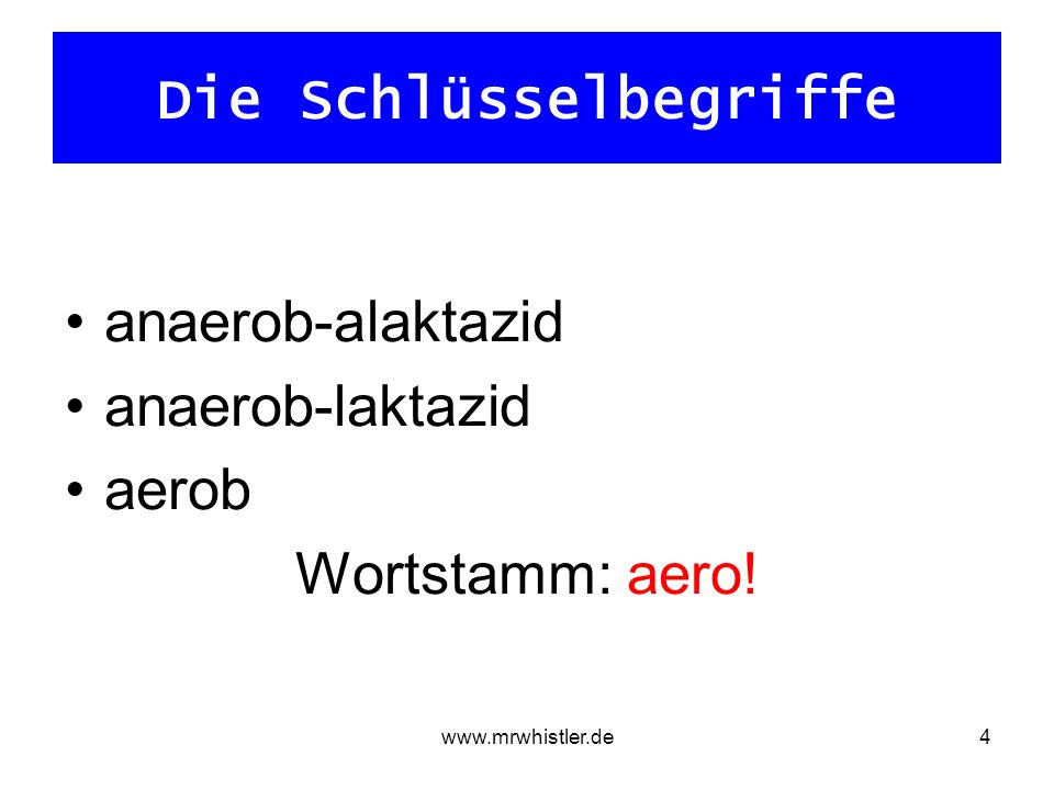 www.mrwhistler.de4 Die Schlüsselbegriffe anaerob-alaktazid anaerob-laktazid aerob Wortstamm: aero!