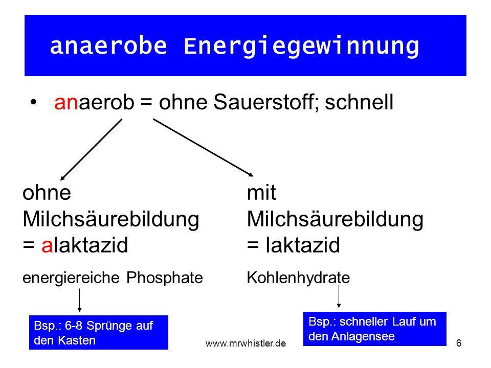 www.mrwhistler.de6 anaerobe Energiegewinnung anaerob = ohne Sauerstoff; schnell ohne Milchsäurebildung = alaktazid energiereiche Phosphate mit Milchsäurebildung = laktazid Kohlenhydrate Bsp.: 6-8 Sprünge auf den Kasten Bsp.: schneller Lauf um den Anlagensee
