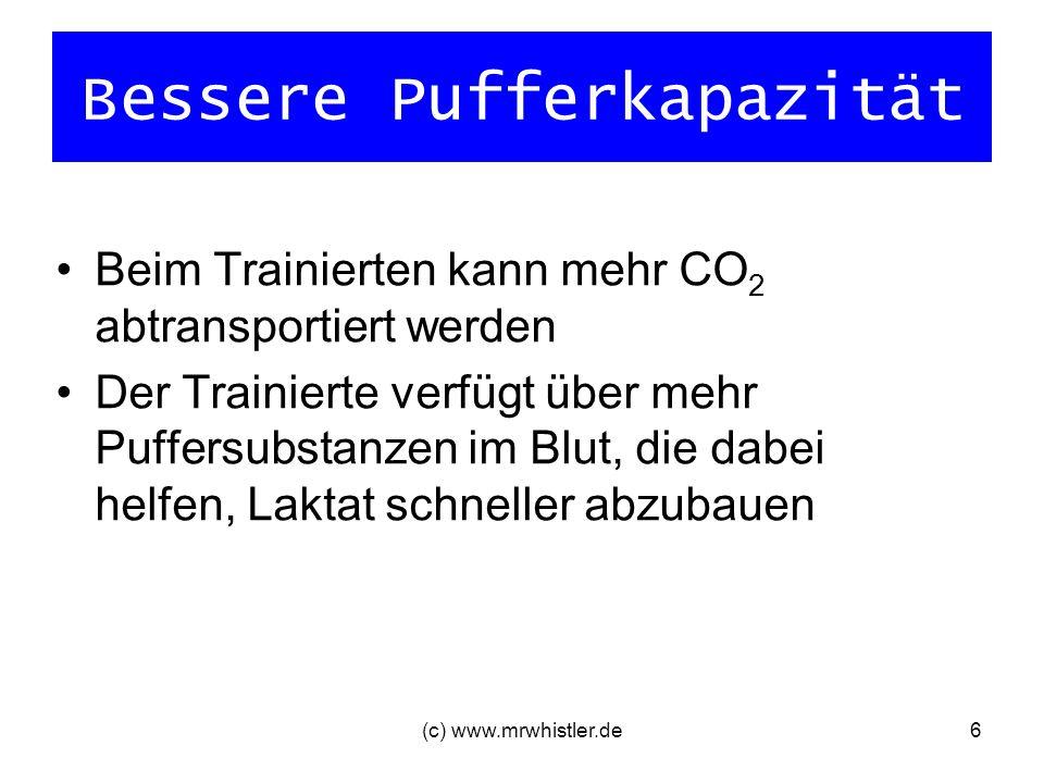 (c) www.mrwhistler.de7 Besserer Gasaustausch in der Lunge Vergrößerung Atemvolumen (= Atemfrequenz x Atemvolumen) bessere Lungendurchblutung (Kapillare) große Sauerstoffentsättigung des Blutes