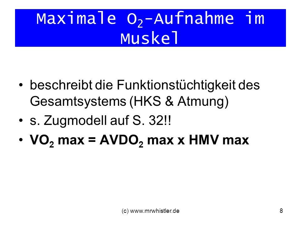 (c) www.mrwhistler.de8 Maximale O 2 -Aufnahme im Muskel beschreibt die Funktionstüchtigkeit des Gesamtsystems (HKS & Atmung) s. Zugmodell auf S. 32!!