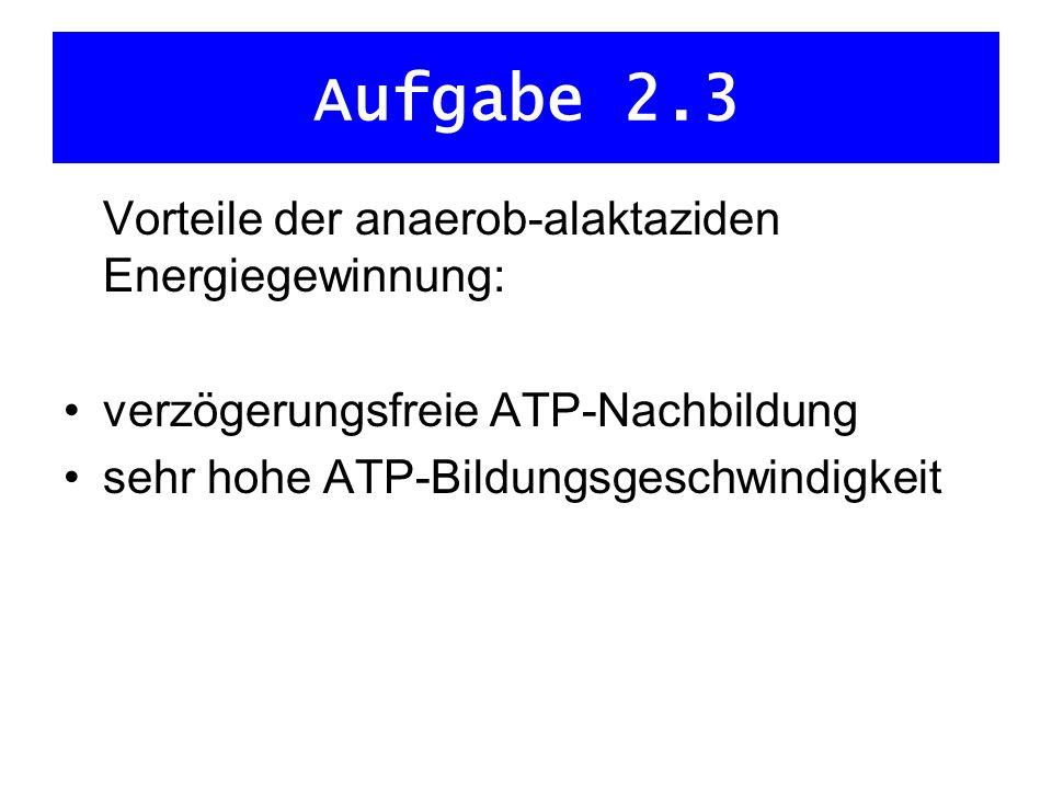 Aufgabe 2.4 es dominiert die anaerob-laktazide Energiegewinnung hohe Intensität Stoffwechselkette des Glucoseabbaus aktiviert viel H in kurzer Zeit für Atmungskette H wird dort nur zu geringem Teil oxidiert Anhäufung von H Blockierung von ATP- Herstellung aber: angehäufter H reagiert mit ebenfalls bei Glycolyse entstandener Brenztraubensäure Laktatbildung