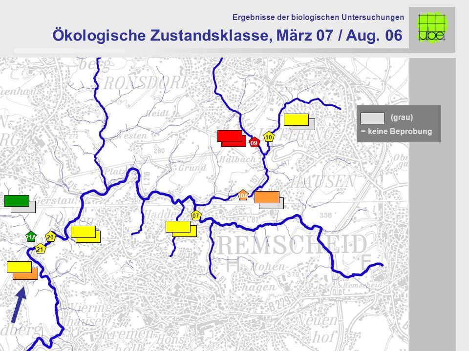 21 20 09 10 10A 07 Ökologische Zustandsklasse, März 07 / Aug. 06 Ergebnisse der biologischen Untersuchungen 21A = keine Beprobung (grau)