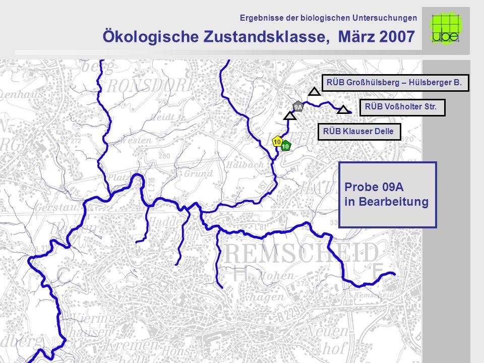 Ökologische Zustandsklasse, März 2007 Ergebnisse der biologischen Untersuchungen 10 RÜB Voßholter Str. RÜB Großhülsberg – Hülsberger B. RÜB Klauser De