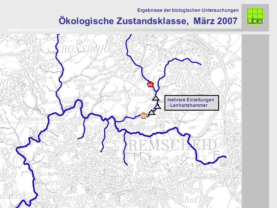 Ökologische Zustandsklasse, März 2007 Ergebnisse der biologischen Untersuchungen 10A 09 mehrere Einleitungen - Lenhartzhammer