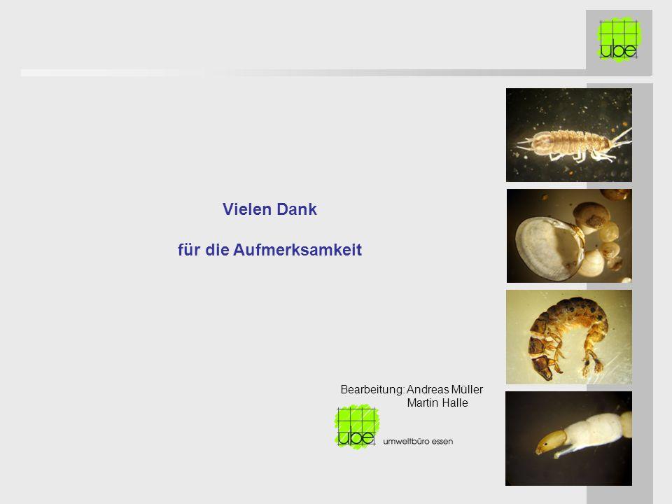 Vielen Dank für die Aufmerksamkeit Bearbeitung: Andreas Müller Martin Halle