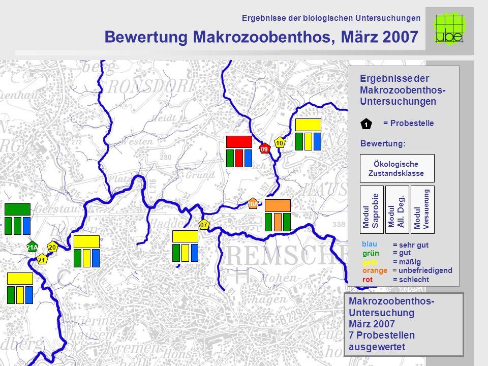 21 20 09 10 10A 07 Bewertung Makrozoobenthos, März 2007 Ergebnisse der biologischen Untersuchungen 21A Makrozoobenthos- Untersuchung März 2007 7 Probe