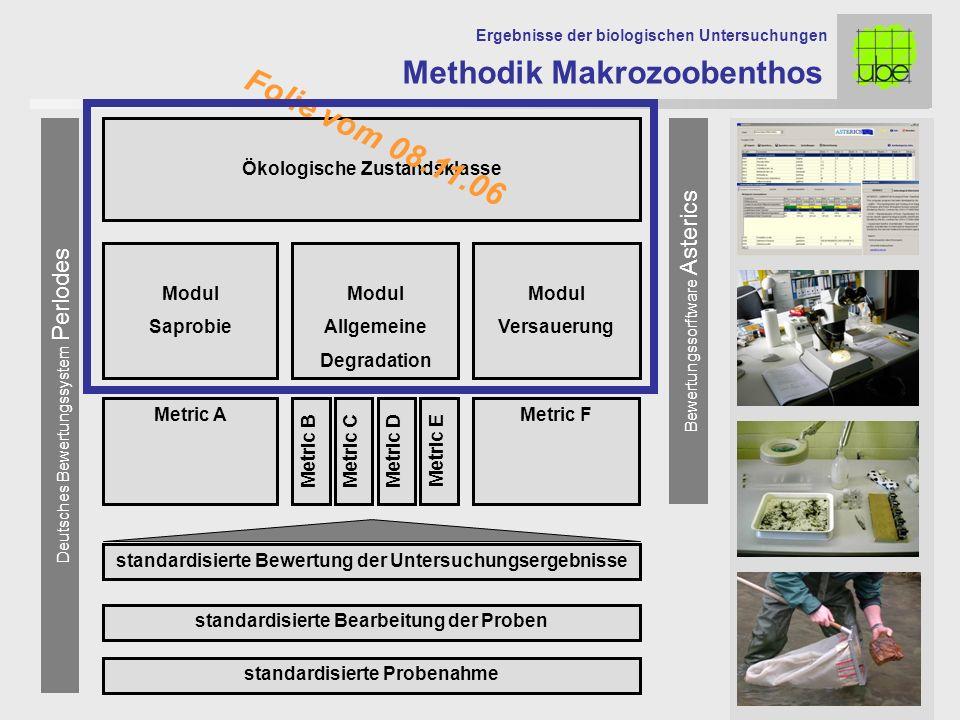 Deutsches Bewertungssystem Perlodes standardisierte Probenahme standardisierte Bearbeitung der Proben Modul Saprobie Modul Allgemeine Degradation Modu