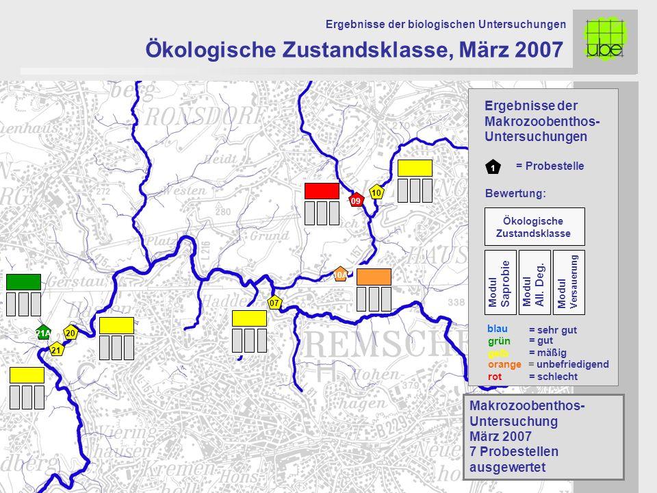 21 20 09 10 10A 07 Ökologische Zustandsklasse, März 2007 Ergebnisse der biologischen Untersuchungen 21A Makrozoobenthos- Untersuchung März 2007 7 Prob