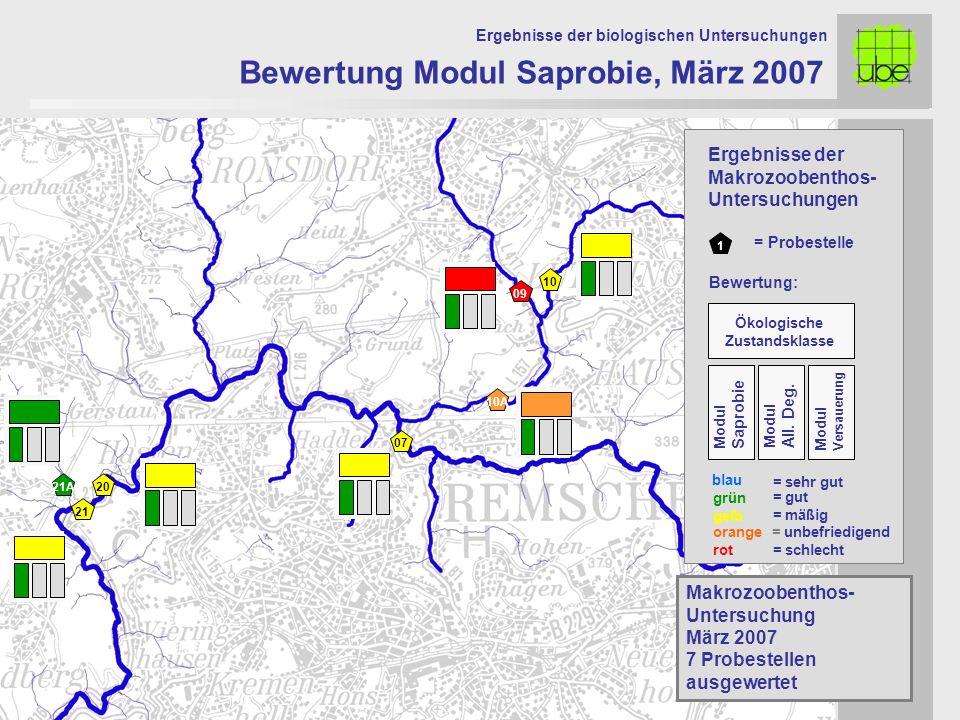 21 20 09 10 10A 07 Bewertung Modul Saprobie, März 2007 Ergebnisse der biologischen Untersuchungen 21A Makrozoobenthos- Untersuchung März 2007 7 Probes
