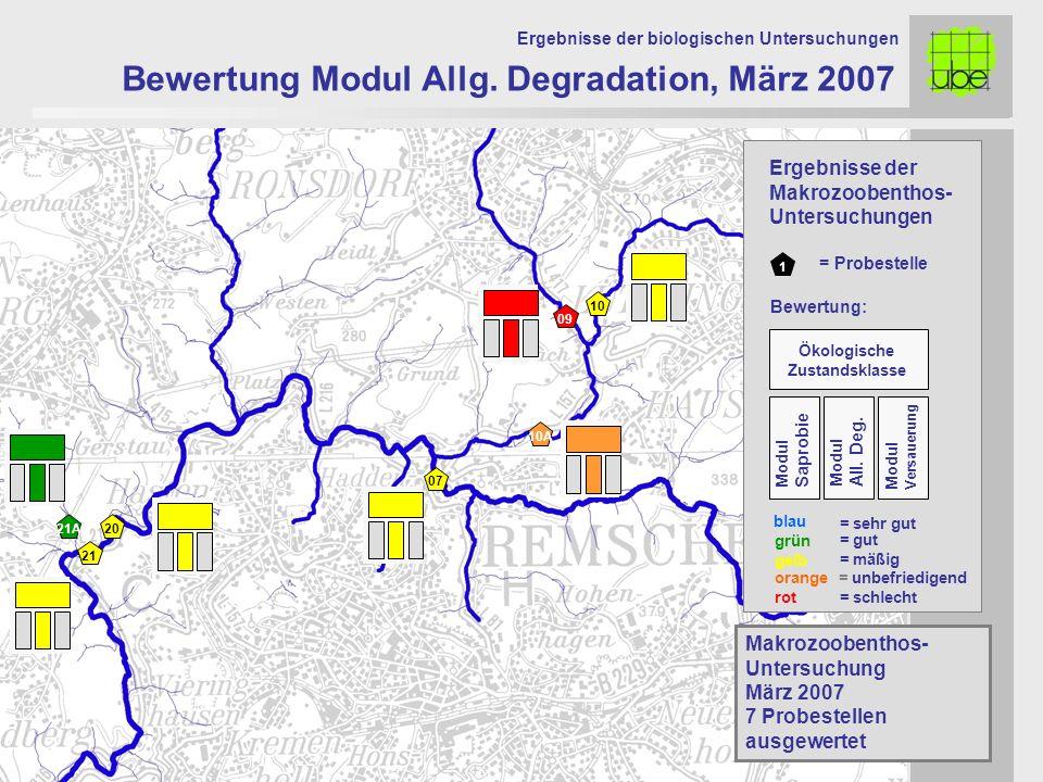 21 20 09 10 10A 07 Bewertung Modul Allg. Degradation, März 2007 Ergebnisse der biologischen Untersuchungen 21A Makrozoobenthos- Untersuchung März 2007