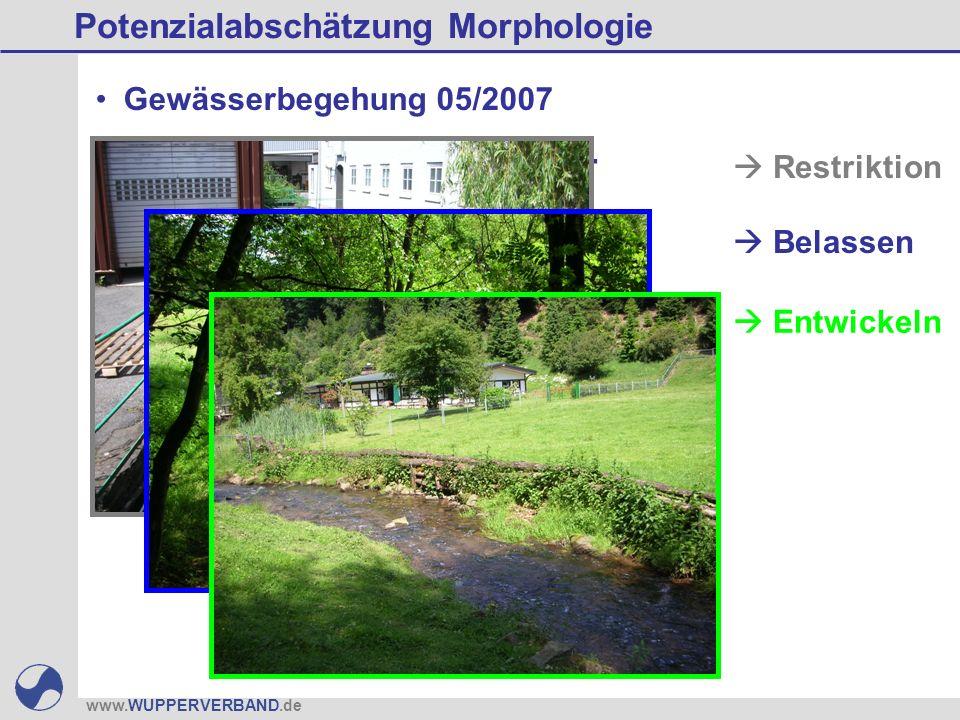 www.WUPPERVERBAND.de Ziel: Ermittlung von Gewässer- abschnitten mit realistischem Entwicklungspotenzial Potenzialabschätzung Morphologie Restriktion Belassen Entwickeln Gewässerbegehung 05/2007