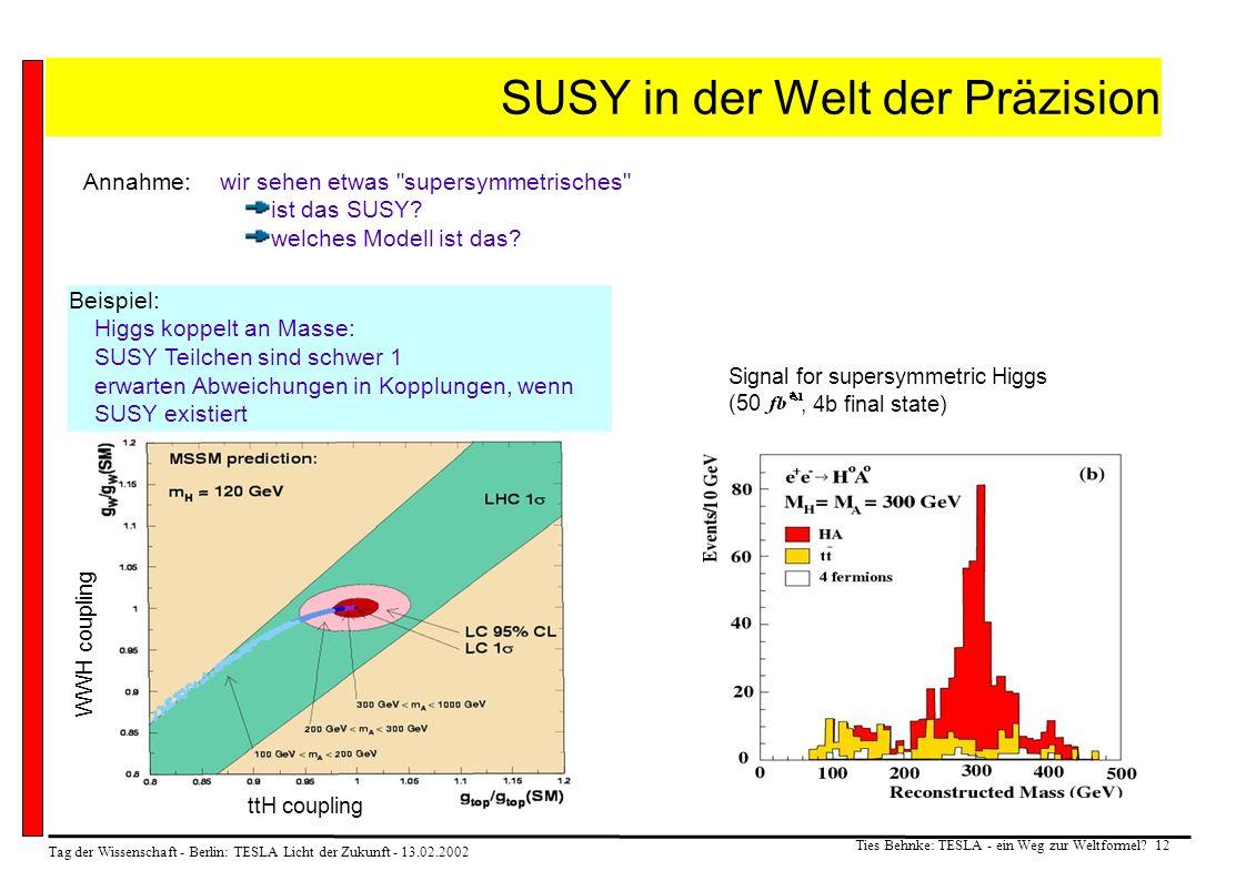 Tag der Wissenschaft - Berlin: TESLA Licht der Zukunft - 13.02.2002 Ties Behnke: TESLA - ein Weg zur Weltformel? 12 SUSY in der Welt der Präzision Sig