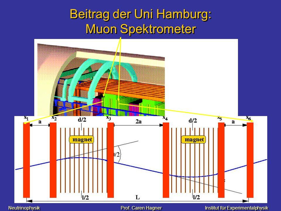 Neutrinophysik Prof. Caren HagnerInstitut für Experimentalphysik Beitrag der Uni Hamburg: Muon Spektrometer