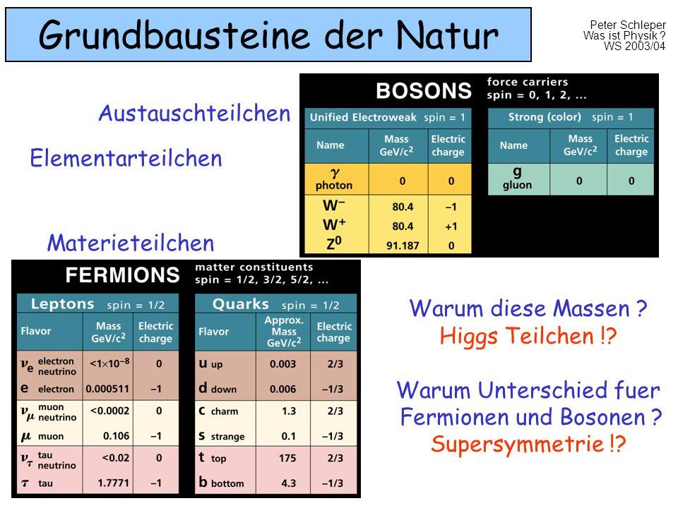 Peter Schleper Was ist Physik ? WS 2003/04 Grundbausteine der Natur Elementarteilchen Warum diese Massen ? Higgs Teilchen !? Warum Unterschied fuer Fe