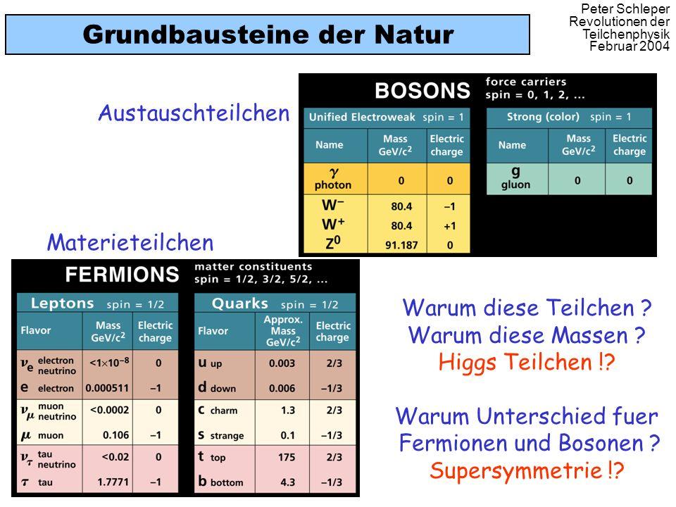 Peter Schleper Revolutionen der Teilchenphysik Februar 2004 Grundbausteine der Natur Warum diese Teilchen ? Warum diese Massen ? Higgs Teilchen !? War