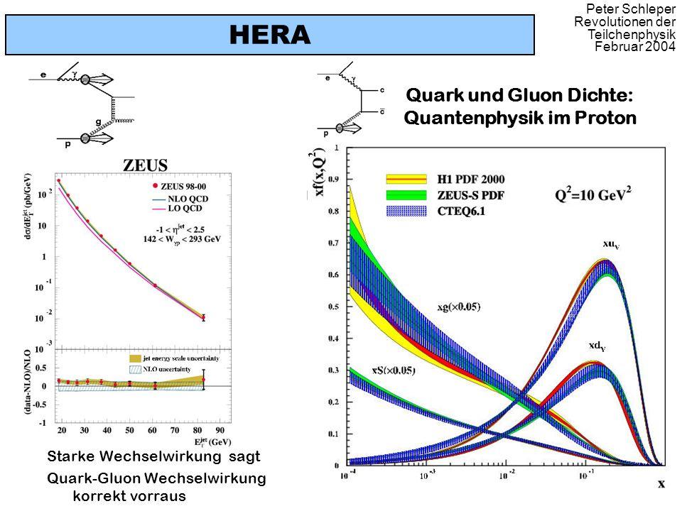 Peter Schleper Revolutionen der Teilchenphysik Februar 2004 HERA Starke Wechselwirkung sagt Quark-Gluon Wechselwirkung korrekt vorraus Quark und Gluon