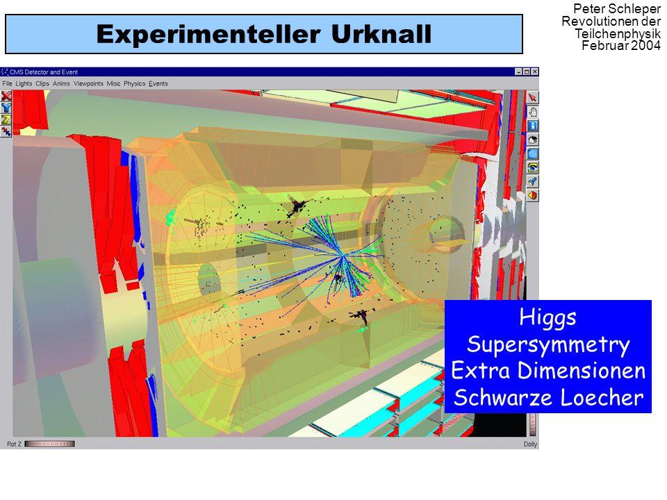 Peter Schleper Revolutionen der Teilchenphysik Februar 2004 Experimenteller Urknall Higgs Supersymmetry Extra Dimensionen Schwarze Loecher