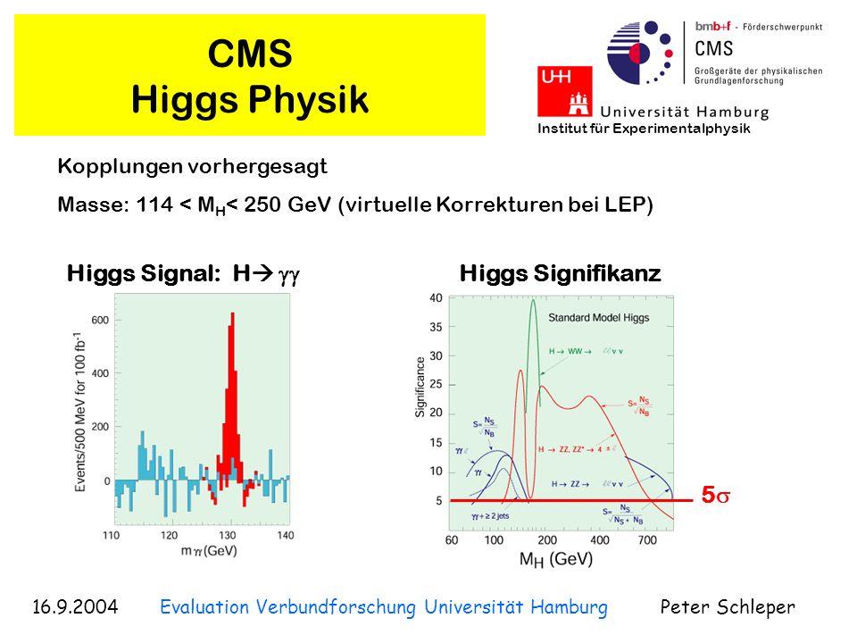 16.9.2004 Evaluation Verbundforschung Universität Hamburg Peter Schleper Institut für Experimentalphysik CMS Higgs Physik Higgs Signal: H Kopplungen v