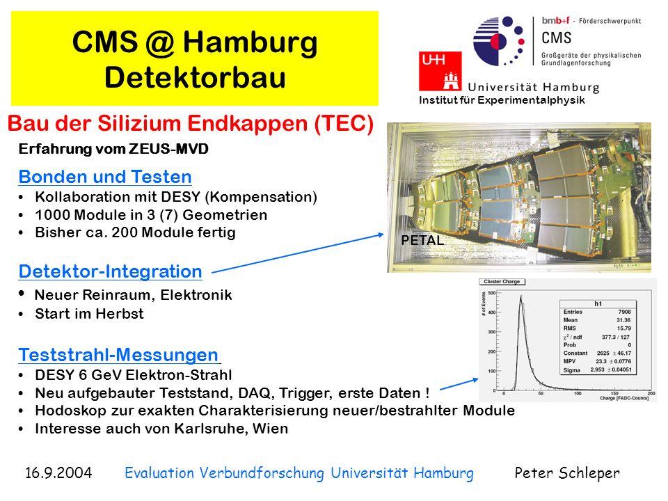 16.9.2004 Evaluation Verbundforschung Universität Hamburg Peter Schleper Institut für Experimentalphysik CMS @ Hamburg Silizium-Detektor R&D Detektorlabor Uni.