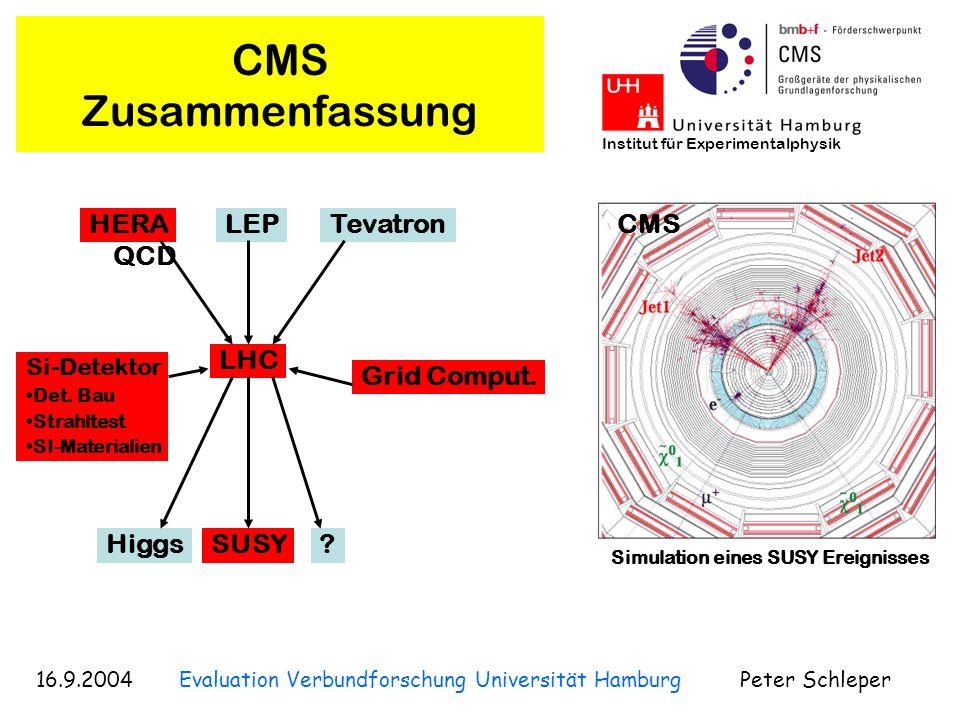 16.9.2004 Evaluation Verbundforschung Universität Hamburg Peter Schleper Institut für Experimentalphysik CMS Higgs Physik Higgs Signal: H Kopplungen vorhergesagt Masse: 114 < M H < 250 GeV (virtuelle Korrekturen bei LEP) Higgs Signifikanz 5