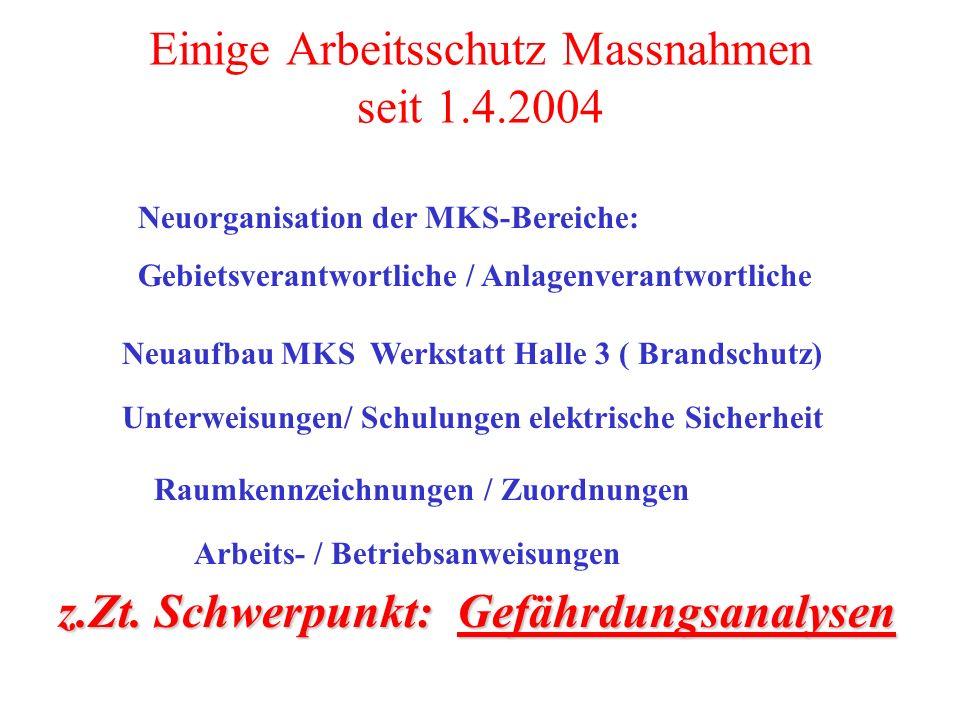 Einige Arbeitsschutz Massnahmen seit 1.4.2004 Neuaufbau MKS Werkstatt Halle 3 ( Brandschutz) Neuorganisation der MKS-Bereiche: Gebietsverantwortliche
