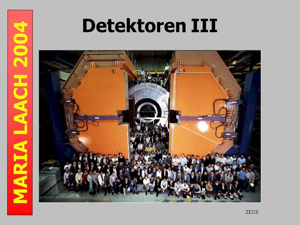 MARIA LAACH 2004 Detektoren III ZEUS