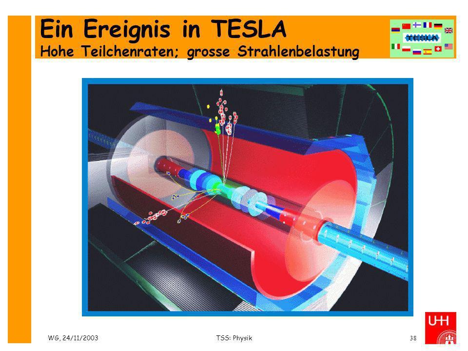 WG, 24/11/2003TSS: Physik38 Ein Ereignis in TESLA Hohe Teilchenraten; grosse Strahlenbelastung
