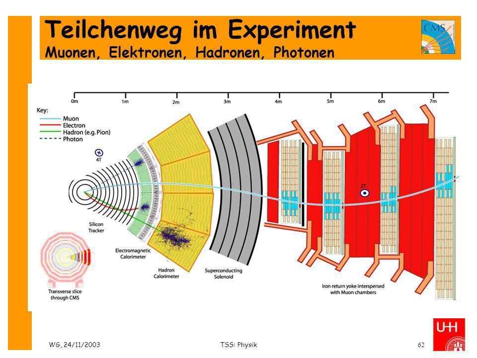 WG, 24/11/2003TSS: Physik62 Teilchenweg im Experiment Muonen, Elektronen, Hadronen, Photonen