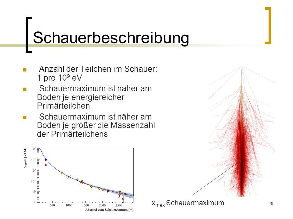 18 Schauerbeschreibung Anzahl der Teilchen im Schauer: 1 pro 10 9 eV Schauermaximum ist näher am Boden je energiereicher Primärteilchen Schauermaximum